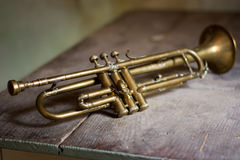 Jazz Trumpet Stock Afbeeldingen