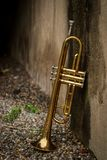 Jazz Trumpet Club stock afbeeldingen