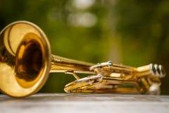 Jazz Trumpet Nature royalty-vrije stock fotografie