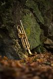 Jazz Trumpet Nature. Autumn jazz instrument trumpet standing alone in nature Royalty Free Stock Image