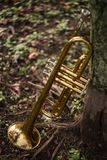 Jazz Trumpet Nature. Autumn jazz instrument trumpet standing alone in nature Royalty Free Stock Photo
