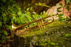 Jazz Trumpet Nature. Autumn jazz instrument trumpet standing alone in nature stock photography