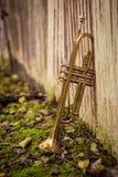 Jazz Trumpet Nature. Autumn jazz instrument trumpet standing alone in nature stock images