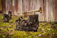 Jazz Trumpet Nature. Autumn jazz instrument trumpet standing alone in nature royalty free stock photos