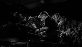 Jazz Varaderos Josone u. Sohn-Festival 8 stockbilder