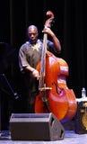 Jazzfest 库存图片