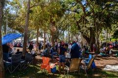 Jazzowy Fest Marzec 2018 wewnętrznych parków Zdjęcie Stock
