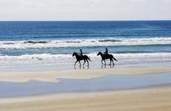 jeźdźcy końskich Obrazy Royalty Free