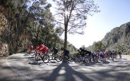 Jeździć na rowerze blisko Caimari Zdjęcia Royalty Free