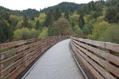 Jeździć na rowerze most Fotografia Royalty Free