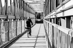 Jeździć na rowerze na moscie w monochromu Fotografia Royalty Free