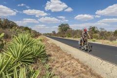 Jeździć na rowerze w Afryka Fotografia Stock