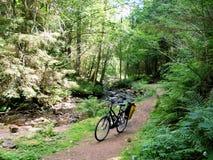 Jeździć na rowerze wycieczkę Obrazy Royalty Free