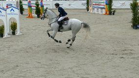 Jeździec i koń przy przedstawienia doskakiwaniem na equestrian wydarzeniu zbiory