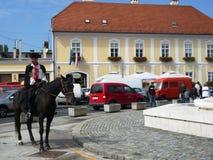 Jeździec strażowy honarary pułk Zdjęcia Royalty Free