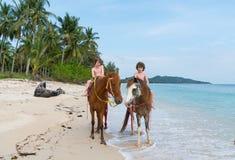 Jeździeccy konie wzdłuż uderzenia Kao wyrzucać na brzeg Koh Samui Obrazy Royalty Free