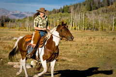 Jeździecki kobieta Koń Obrazy Stock
