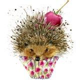 Jeż, deser z czereśniowymi koszulek grafika i ilustracja z pluśnięcie akwarelą, jeża i deseru textured tło Ja ilustracja wektor