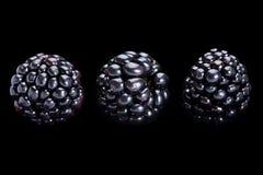 Jeżynowa owoc na czerni Zdjęcia Royalty Free