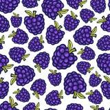 Jeżynowy bezszwowy wzór Wektorowego doodle jagodowy projekt dla tapety, strony internetowej tło, opakowanie, pakuje, tkanina Obrazy Royalty Free