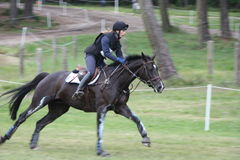 Jeździec na koniu przy Saumur Francja Obraz Royalty Free