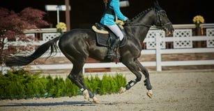 Jeździec na podpalanym koniu w rywalizacjach Obrazy Stock