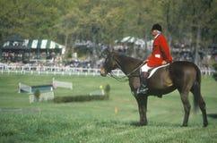 Jeździec obserwuje steeplechase pole na horseback, Prind Steeplechase Glenwood park, Middleburg, Virginia Obrazy Royalty Free
