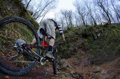 Jeździec w akci Fotografia Stock