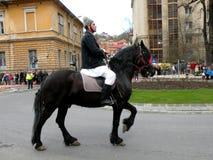 Jeździec w w centrum Brasov Zdjęcie Royalty Free
