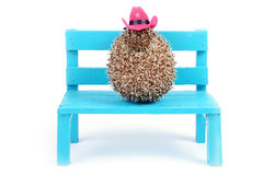 Jeż i kowbojski kapelusz. Zdjęcie Stock