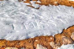 Je manque U écrit dans la neige Photos stock
