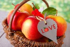 Je pommes d'amour Images stock
