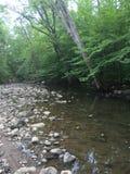 Je suis des rivières Photo libre de droits