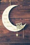 Je t'aime à la lune et au dos Images stock