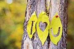 Je t'aime écrit avec des feuilles d'automne Photos stock