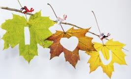 Je t'aime écrit avec des feuilles d'automne Photographie stock libre de droits
