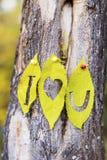 Je t'aime écrit sur des feuilles d'automne Photographie stock libre de droits