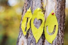 Je t'aime écrit sur des feuilles d'automne Photos stock