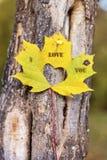 Je t'aime écrit sur une feuille d'automne Photos stock
