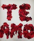Je t'aime en espagnol, formé avec les pétales de rose rouges Photos stock