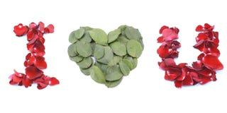 Je t'aime fait par Rose rouge d'isolement sur le fond blanc Photographie stock libre de droits