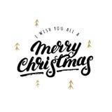 Je te souhaite tout une main de Joyeux Noël écrite le lettrage Photographie stock libre de droits
