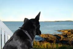 Je vois la mer ! Image libre de droits