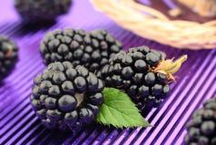 Jeżynowa owoc na purpury folii Zdjęcia Royalty Free
