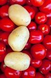 je zdrowe grule pomidory Zdjęcia Royalty Free