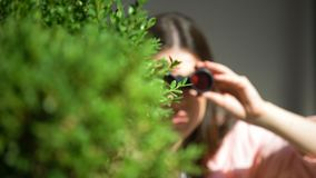 Jealous woman with binoculars hiding behind tree spying for husband, betrayal. Stock footage stock footage