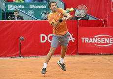 Jean Julien Rojer Royalty Free Stock Photography