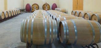 Jean Leon underground barrel cellars Royalty Free Stock Image