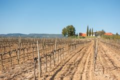 Jean Leon wineries and wineyards. A view of the Jean Leon wineries from the wineyards in the region of El Penedes in southwestern Catalonia Stock Photos