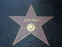 Jean Muir-ster in Hollywood Royalty-vrije Stock Afbeelding